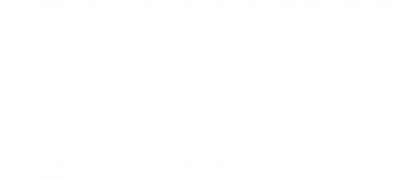 Snertrit 2019